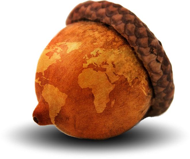 Online Donations - Acorn to Oak International